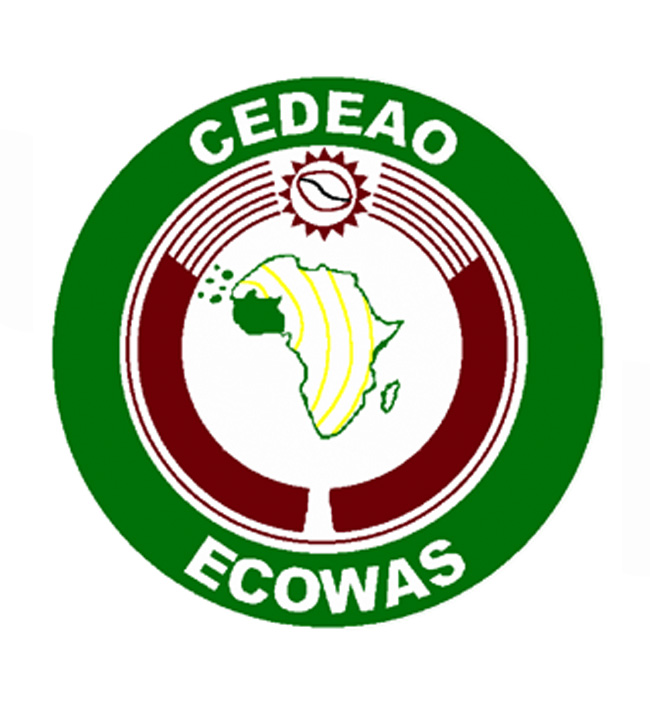 ECOWAS determined to improve energy access in West Africa