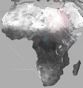 Africa African Brains
