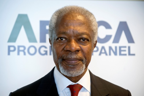 Kofi Annan, Chair of the Africa Progress Panel